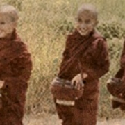 The Dhamma protects the one who lives by the Dhamma?